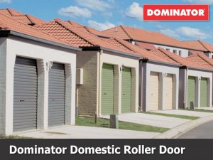 Dominator Domestic Roller Door